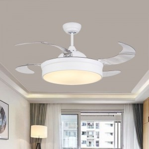 Ceiling fan with Led light with remote (UNI-174-2)